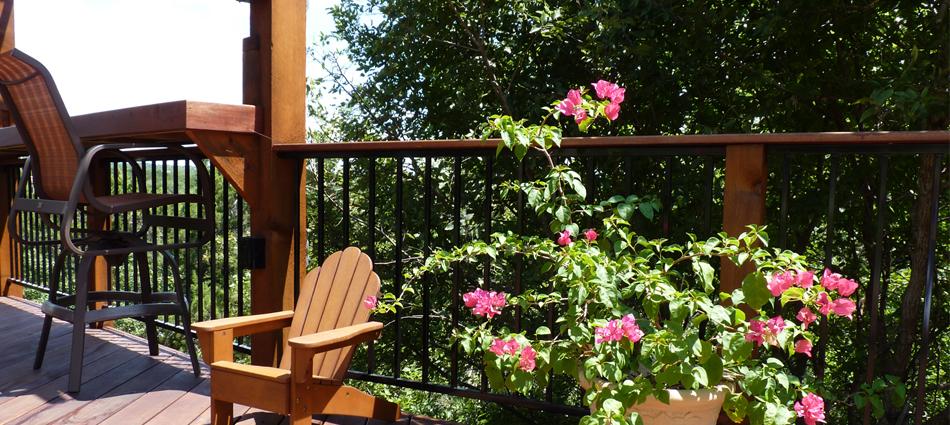 Tigerwood deck at tree canopy
