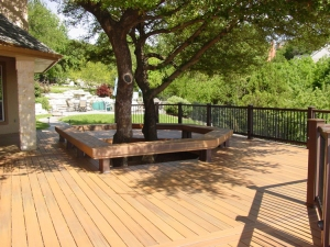 This tree at this home in River Place, TX gave the deck a oersonality all it's own
