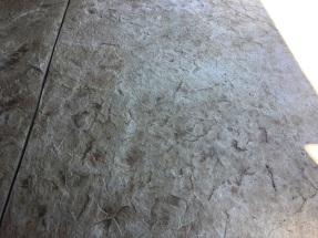 Round Rock Patio with Overlayment